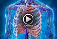 رسانه سلامت قلب