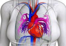مشکلات قلبی در خانم های جوان-پرولاپس
