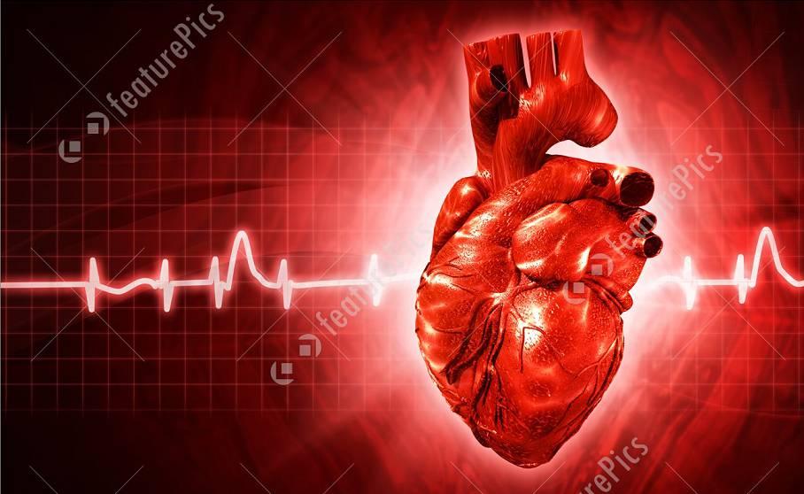 نوار قلب یا الکتروکاردیوگرام
