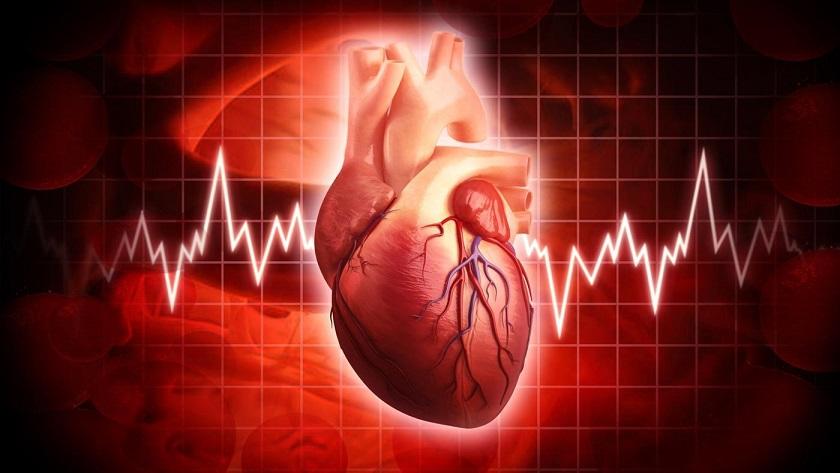 many-times-heart-beat-day_55e78b7fbeb0bff6