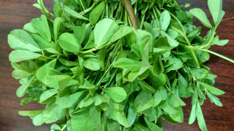 aesthetic_bunch_of_fenugreek_greens