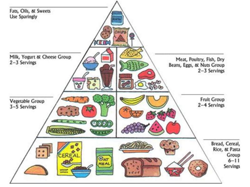 برنامه غذایی متنوع