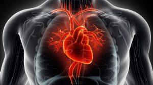 سی تی آنژیوگرافی قلب و عروق