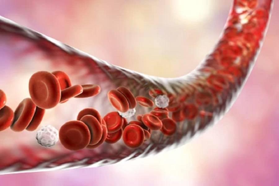جریان خون در بارداری