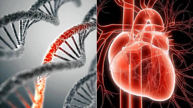 ژنتیک بیماریهای قلبی
